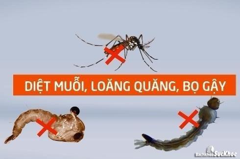 Nguyên nhân chính gây bệnh sốt xuất huyết là do vi rút Dengue