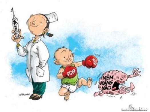 Bài thuốc đông y chữa viêm màng não hiệu quả